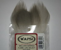 mallard barred flank LRG select natural Wapsi