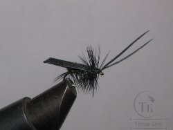 "Муха сухая Dry fly ( 25 ) "" Quill Wing Caddis Black ""крючок № 16 ( Kumho )"