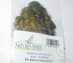 Peacock indian blue body feathers (natural iridescent Gold) Natures Spirit