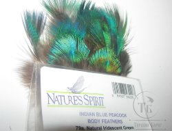 Peacock indian blue body feathers (natural iridescent Green) Natures Spirit