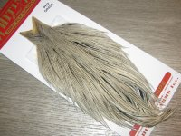 Скальп петуха Whiting dry fly pro-grade cape Silver Badger