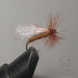"Муха сухая Dry fly ( 2 ) "" Poly Pro Brown White Caddis  "" крючок № 12 ( Kumho )"