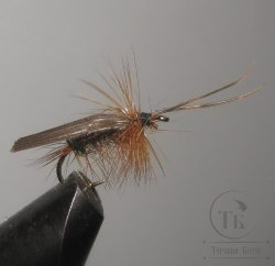 "Муха сухая Dry fly ( 13 ) "" Wood Cock Caddis  "" крючок № 10 ( Kumho )"